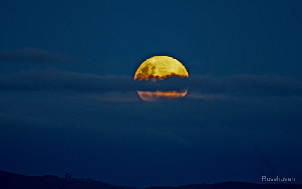 """""""Perigee Full Moon"""" by Rosehaven"""
