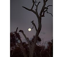 Super Moon Yesterday (May 6) Photographic Print