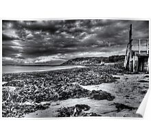 Weedy Beach in mono Poster