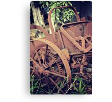 Rustic and Rusty Canvas Print