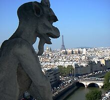 Eifel Tower from Notre Dame Cathedral by repairqueen