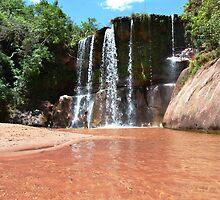 Waterfall in the bolivian jungle by Daniele Iengo