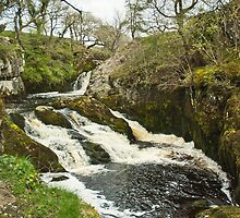 Triple Spout, Ingleton, Yorkshire Dales by Sue Knowles