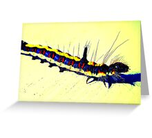 Creepy Crawly Greeting Card