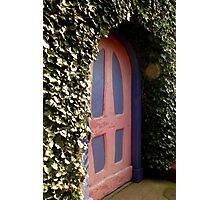 Door Pink/Purple Photographic Print