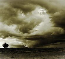 An Angry Sky by Alison Hill