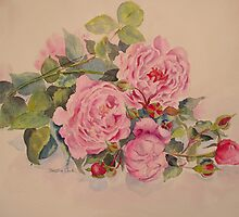 Roses and more roses by Beatrice Cloake