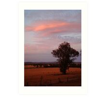 Country NSW Art Print