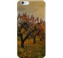 Fall Colors #66756 iPhone Case/Skin