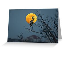 Super Moon and Great Blue Heron Greeting Card