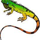 Green Iguana  by ImageMonkey