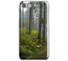 Back Roads #44534 iPhone Case/Skin