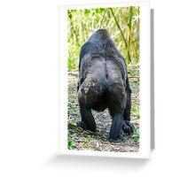 Gorilla 05 Greeting Card