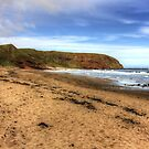 The Beach at Pease Bay by Tom Gomez