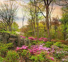 The Azalea Garden by Jessica Jenney