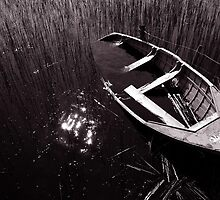 Boats of the Fermanagh lakelands #2 by ragman