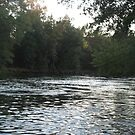 Manistee River by Kenneth Vanover