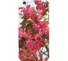Red Blossoms iphone case iPhone Case/Skin