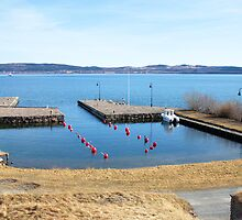 Visingsö's harbour by João Figueiredo