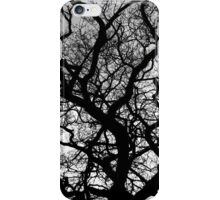 In between the branches iPhone Case/Skin