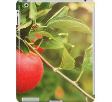 Michigan apple iPad Case/Skin