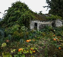 Old House #4454 by Charles & Patricia   Harkins ~ Picture Oregon