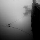 B. Traven by lumiwa