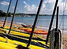 Colourful Hire Boats, Paihia Beach..........! by Roy  Massicks
