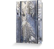 Frost Owl #01 Greeting Card
