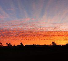 Sunrise Silhouette by SMCK