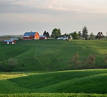 The Green Hills of Home by Nadya Johnson