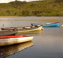 Fishing Boats On Lough Finn by Fara