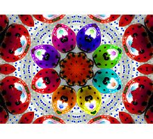 dance of the multi colored ladybugs Photographic Print