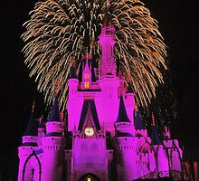 Disney World Magic by benjamphotos