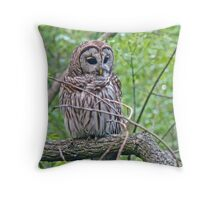 Barred Owl - Strix varia Throw Pillow