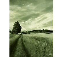 Summertime Photographic Print