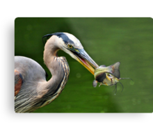 Success And The Great Blue Heron Metal Print