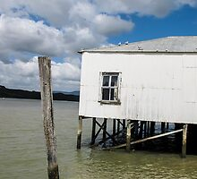 old white building by Anne Scantlebury