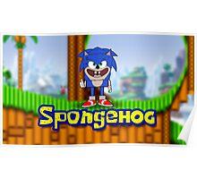 Spongehog Poster