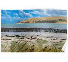 Opononi landscape Poster