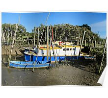 boats in the mud Poster