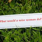 What would a wise woman do? by Rosebuds