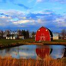 Pondside Farms by Larry Trupp