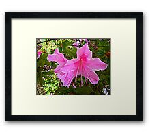 Each flower is a soul opening out to nature. Framed Print