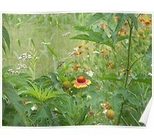 """A Small Scale """"Jungle"""" Habitat Poster"""