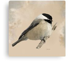 Willow Tit Canvas Print