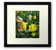 Sunlit Yellow Tulips - Keukenhof Gardens Framed Print