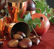 Chestnuts & pomegranate. by Fizzgig7