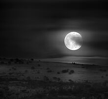Hello Moon by Bob Larson