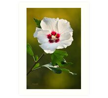 Rose of Sharon Flower Art Art Print
